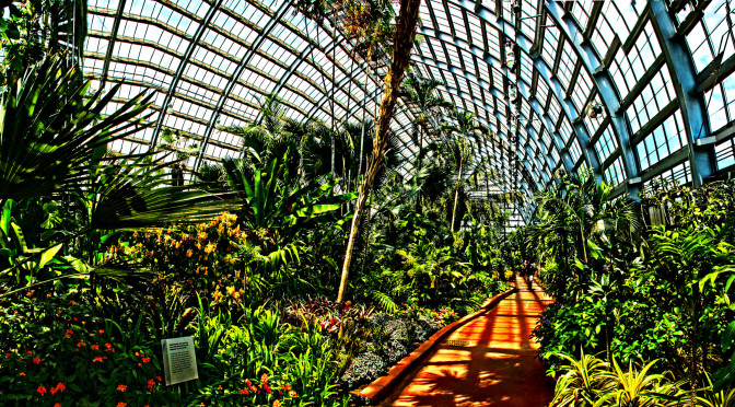 Conservatory_wide_angle